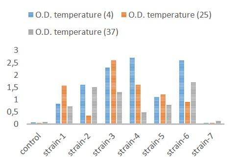 Effect incubation temperature on biofilm formation in P. aeruginosa.